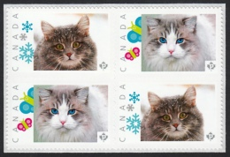 OJOS AZULES & SIBERIAN Domestic Cat Breeds Picture Postage MNH Block Of 4 Stamps Canada 2015 [p15/7dct2/ - Domestic Cats
