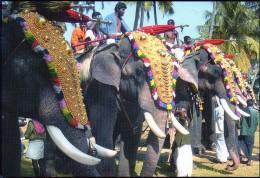Inde  Elephants  Festival  16  X  11  Cm - India