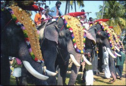 Inde  Elephants  Festival  16  X  11  Cm - Indien