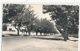 GUERCIF Route D'Oujda - Autres