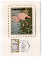 1970--Carte Maximum--Année Européenne De La Nature--Flamant Rose--cachet  PARIS--75 - Cartes-Maximum