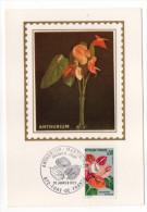 1973--Carte Maximum--Fleur-ANTHURIUM De La Martinique--cachet  FORT DE FRANCE--972 - Cartes-Maximum