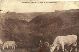 Environs De Roanne Au Fond Le Pont De Villerest - Roanne