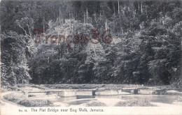 Jamaica Jamaïque - The Flat Bridge Near Bog Walk - 2 SCANS - Jamaïque