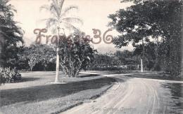 Jamaica Jamaïque - Hope Gardens - 2 SCANS - Jamaïque