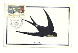 OISEAU / HIRONDELLE = TCHECOSLOVAQUIE 1962  N° 1235  = CARTE MAXIMUM - Swallows