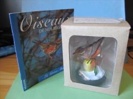 Figurines 10cm-boîte Origine-livret 20 Pages OISEAUX DE NOS REGIONS GRIVE MAUVIS Vadis éd. Oiseau Animaux Figurine - Uccelli - Anatre