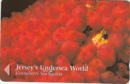 """JERSEY ISL. - Jersey""""s Undersea World/Gooseberry Sea Squirts, CN : 49JERC(0 With Barred), Tirage %20000, Used"""