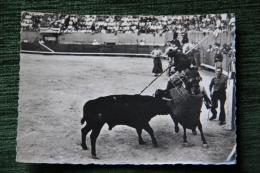 CORRIDA - Une Belle Pique - Corrida