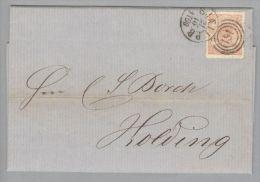 Heimat Dänemark Sjaell P.B. 1866-10-21 Brief Mit Mi#13 3-Kreis-O #181 Nach Holding - 1851-63 (Frederik VII)