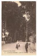 CAMBO-LES-BAINS - L'Allée Des Thermes - MD 19 - Non écrite - Tbe - Cambo-les-Bains