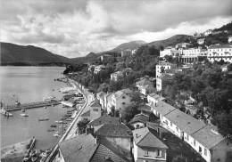 MONTENEGRO - HERCEG NOVI ** Jolie Carte Photo ( Studio Sombov ) ** Format CSPM Noir Et Blanc GF 1962 - - Montenegro