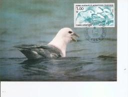 Oiseaux -Fulmar ( CM Des TAAF De 1986 à Voir) - Birds