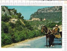 MALLORCA   -   VALLDEMOSA   -  Vista  De La  Cartuja  - Attelage - Mallorca