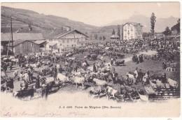 J. J.  2909   Foire  De  Mégève  (Hte-Savoie) - Megève