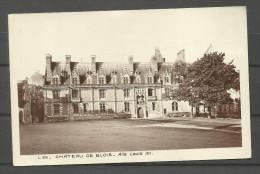 Château De Blois - Blois