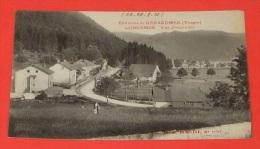 Environs De Gérardmer ( Vosges ) - Longemer - Vue D'ensemble :::: Petite Animation  ------- 291 - France