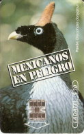 TARJETA DE MEXICO DE UN PAVON   (BIRD-PAJARO-EAGLE) - Pájaros