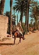 CPSM Taroudant   L1902 - Marruecos