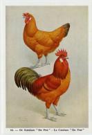 Fort - Hanen En Hennen - Coqs Et Poules - Roosters And Hens, Kippen, Poulets, Chickens - 66 - Unclassified