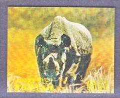 BHUTAN   116 F   *  3 D  STAMP  FAUNA  RHINO - Holograms