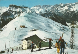 CANAZEI  TRENTO   Val Di Fassa Campi Da Sci Belvedere  Monte Pecol  Ski - Trento