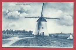 Ronse - Windmolen Hootondt ( Verso Zien ) - Renaix - Ronse
