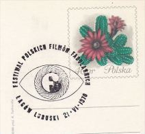 1970 Lagow POLAND COVER Card EVENT Pmk POLISH Feature FILM FESTIVAL Cinema Movie Stamps Postal Stationery Cactus Cacti - Cinema