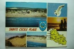 D 62 - Sainte Cecile Plage - Non Classés