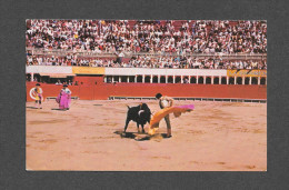 CORRIDA - TIJUANA MEXICO - BULL FIGHT SCENE - PHOTO ENRIQUE ASIN - Corrida