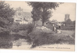 CHALLANS. - Vue Prise De L'Ile D'Amour - Challans
