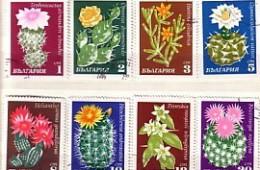 BULGARIA  / Bulgarie 1970 Cactuses Set Of  8v.-used/oblitere - Gebraucht