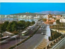 CPSM Palma De Mallorca    L1905 - España