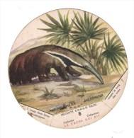 Belgisch Congo Belge Collectie La Vache Qui Rit 8 - Autres Collections