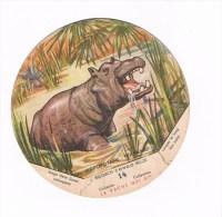 Belgisch Congo Belge Collectie La Vache Qui Rit 14 - Autres Collections