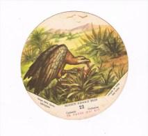 Belgisch Congo Belge Collectie La Vache Qui Rit 22 - Autres Collections