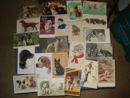 Beau Lot De  57  Cpa , Theme Chiens  Illustration Et  Chiens  Humanises - Cartes Postales