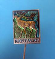 HUNTING ( Croacia Pin Badge ) Chasse Jagd Caccia Caza Hunt Roe Deer Doe Biche Chevrette Chevreuil Cierva Reh Capriolo - Animales