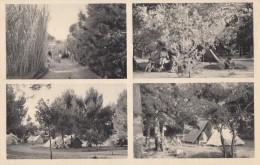 CPA - Le Brusc Sur Mer - Camp Des Charmettes - Camping Club De France - - Autres Communes