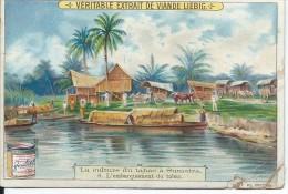 Images/ Chromo/La Culture Du Tabac à Sumatra/Cie Liebig/Sanguinetti N°715/Vers 1900   LBG20 - Liebig