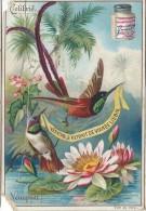 Images / Chromo/Colibris /Nénuphar /Cie Liebig/Sanguinetti N°540/Vers 1895    LBG26 - Liebig
