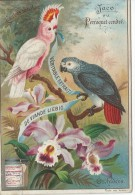 Images / Chromo/Jaco / Orchidées/Cie Liebig/Sanguinetti N°540/Vers 1895    LBG27 - Liebig