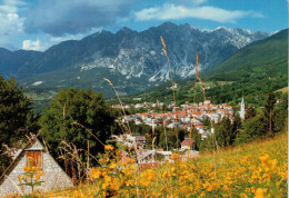 ALPAGO(BL)     TAMBRE Mt 922  PANORAMA VERSO IL GRUPPO MESSER    (VIAGA) - Italia
