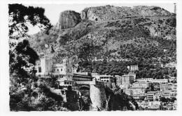MONACO - N° 1005 - VUE GENERALE ET LE PALAIS DU PRINCE - CARTE FORMAT CPA NON VOYAGEE - Prince's Palace