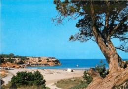 CPSM Mallorca-Formentera-Cala Saona    L1908 - Formentera