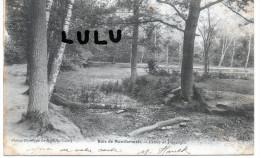 DEPT 93 : Précurseur ; 2 Scans , Bois De Montfermeil , étude De Paysages - Montfermeil