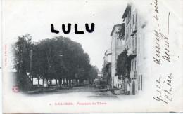 DEPT 31 Précurseur 2 Scans ; Saint Gaudens; Promenade Des Tilleuls - Saint Gaudens