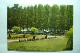 D 82 - Moissac - Camping De L'ile De Ridounet - Moissac