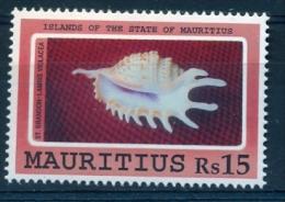 MAURITIUS Shells - Conchiglie