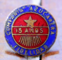 PIN-38 CUBA HISTORICAL PIN COMPAÑIA AZUCARERA. SUGAR. - Badges